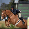 HITS Hunter exhibitors jump for the money in Week I of the HITS Ocala Winter Circuit