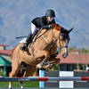 Jumpers vie for the money in the $10,000 Jr/A-O Jumper Classic and the $15,000 UltrOZ Jumper at HITS Desert Circuit I