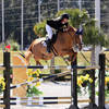 HITS Ocala Winter Circuit Week I Sunday Jumper Round-Up featuring the $50,000 Tuffrider/Equine Couture Grand Prix