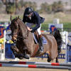 Desert Circuit III continues with action-packed classes and hefty prize purses featuring the $50,000 Brook Ledge Welcome Stakes and the $65,500 Wilmington Trust Grand Prix