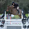 Week III of the Ocala Winter Circuit sets the stage for Hunter exhibitors