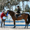 Ocala Winter Circuit III Sunday Jumper Round-Up