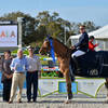 Australia's Scott Keach Brings Home the Blue Ribbon in the $100,000 FEI City of Ocala Grand Prix at HITS Ocala