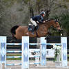 Jumpers competed for cash in Week VI of the Ocala Winter Circuit