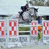 Ocala Week VIII Weekend Jumper Round-Up Featuring the $50,000 Purina Animal Nutrition Grand Prix