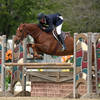 Hunters Cash In At HITS Culpeper Week I