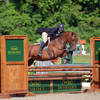 Hunter Exhibitors Vie for Top Titles at HITS-on-the-Hudson I