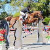 Success in the Heart of Virginia Horse Country at the HITS Culpeper Finals