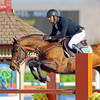 ChronofHorse.com  |  $70,000 Purina Animal Nutrition Grand Prix At HITS Coachella  |  Feb. 6, 2018
