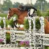 Dorothy Douglas Takes the Grand Prix Win at Showplace Spring Spectacular I
