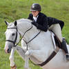Hunters, Jumpers, and Eq, Oh My at HITS-on-the-Hudson IV!