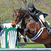 Peg Seals and Surely Return Home to HITS Culpeper, Win $5,000 Devoucoux Hunter Prix