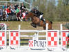 Michael Hughes and Luxina Impressive in First Grand Prix Win of HITS Ocala Circuit