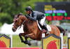 Quality Girl Again Proves Her Namesake True, Carrying Todd Minikus to Win $25,000 SmartPak Grand Prix Presented by Zoetis