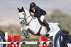 Will Simpson Wins HITS Thermal $50,000 Equine Couture/TuffRider Grand Prix