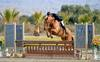 John Bragg Stacks the Leaderboard in the $5,000 Devoucoux Hunter Prix