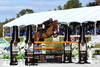 Kirk Webby and Brando Du Rouet Win the $50,000 HITS Grand Prix at HITS Ocala