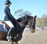 IHSA Horse Show Team