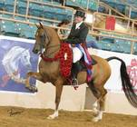 CP Rumor Has It (CP Sequoia x CP Jasmine)