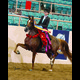 2012 Youth National Champion Arabian English Pl. JTR 14-17 with Makenna Rooker