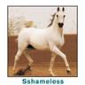 SSHAMELESS ++