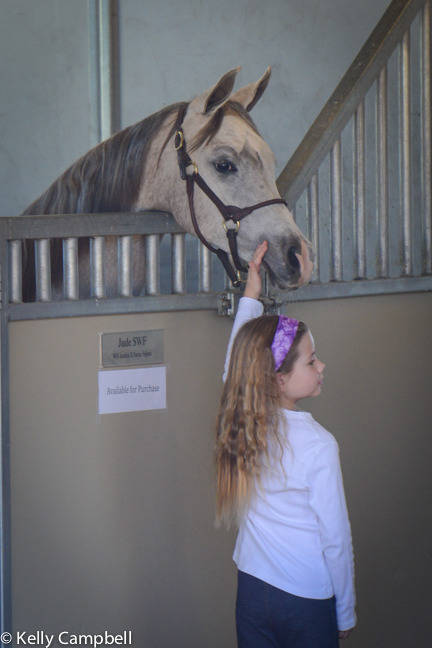 Avery with Jude. Her favorite filly!