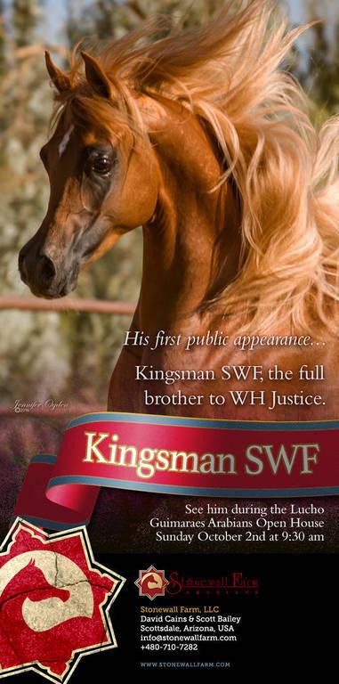 Kingsman makes his debut !