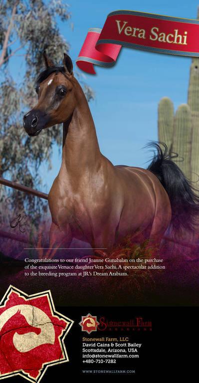 Congratulations JR's Dream Arabians
