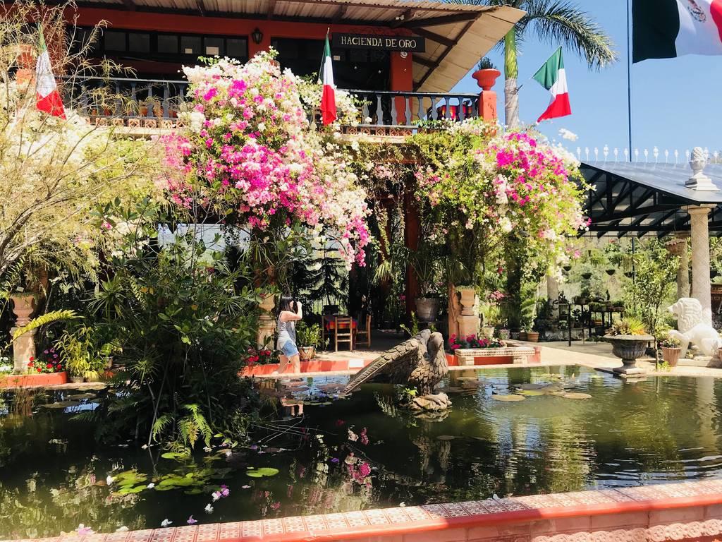 Puerto Vallarta February 2018