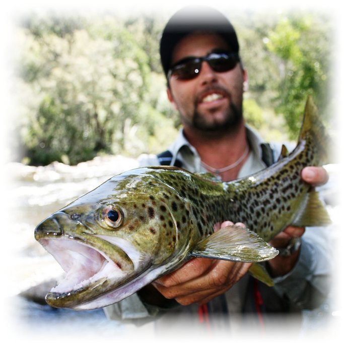 Mr Freshwater