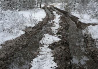 muddy-699901_1920