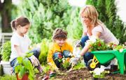 Summertime Gardening With Your Kids