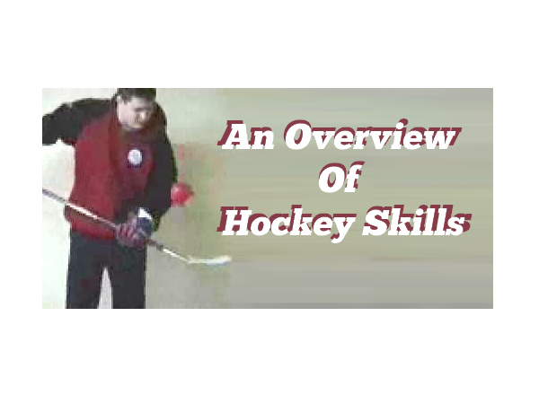 An Overview Of Hockey Skills