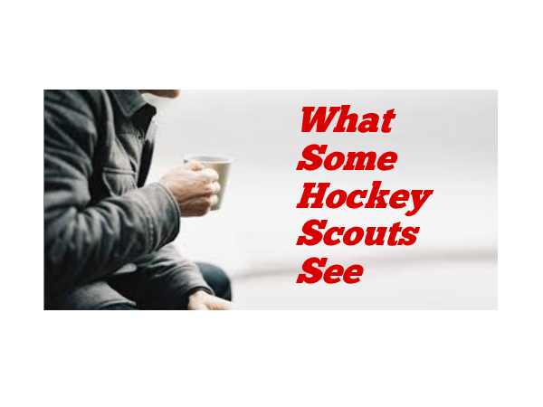What Some Hockey Scouts See