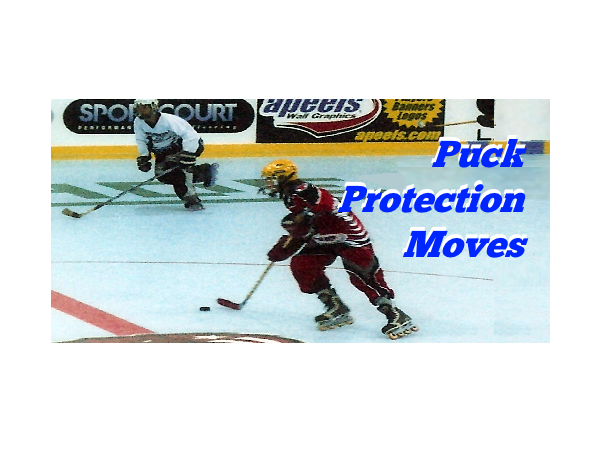 Puck Protection Moves