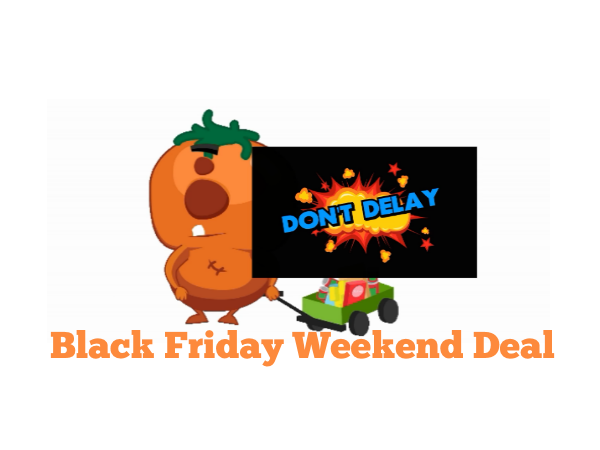 Countdown to Our Special Black Friday Weekend Deal