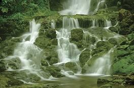 Dickson_falls