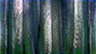 Landscape_metamorphosis__21
