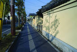 Morning_shadows