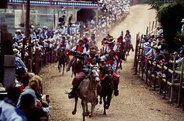 Horse_races