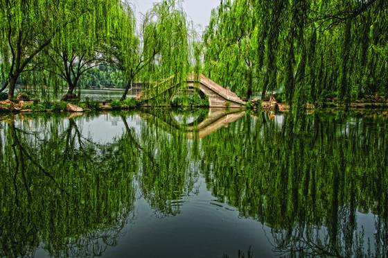 Beihai_park