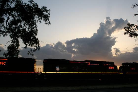 Neon_train