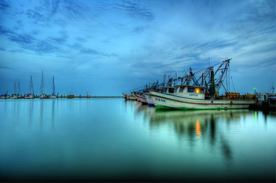 Harbor blue hour