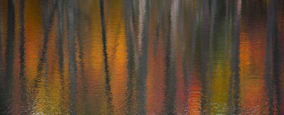 Autumn_reflections