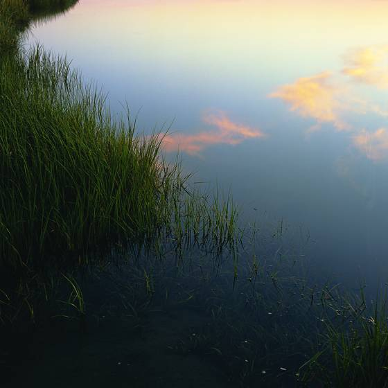 Nauset_marsh_sunrise