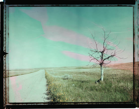Prairie_road