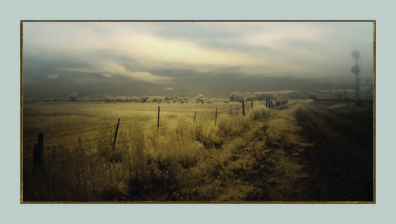 Along_the_tracks