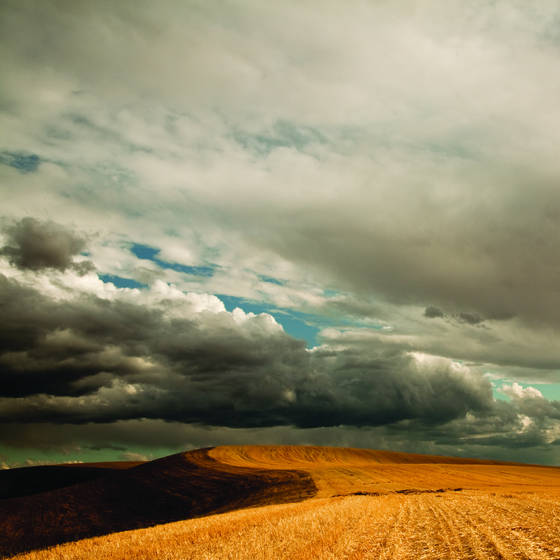 Dramatic_autumn_fields