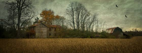 Abandoned_farm