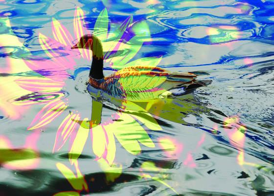 Goose-n-flower